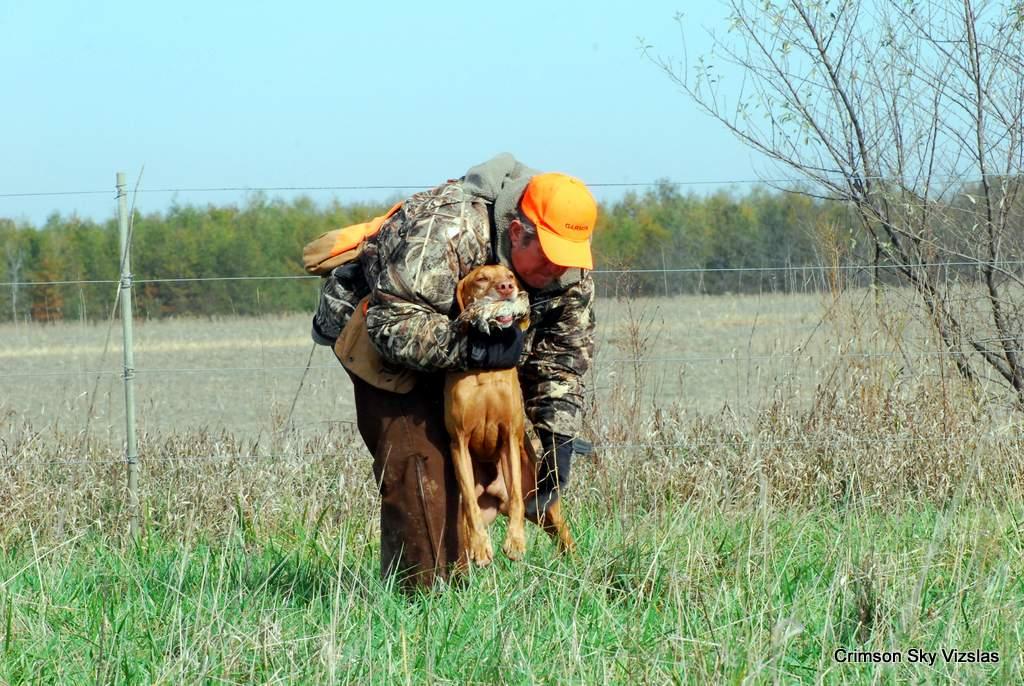17-11-08 NAFC S2_15_Guy & Bull