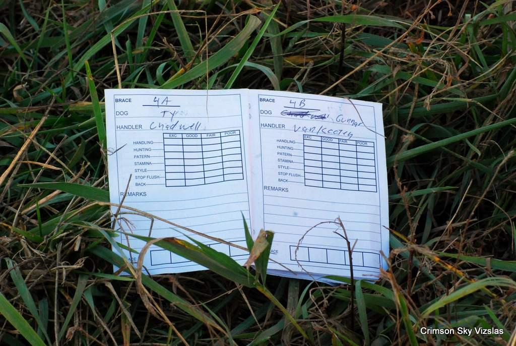 17-11-08 NAFC S4_01_Ty & Gunnar