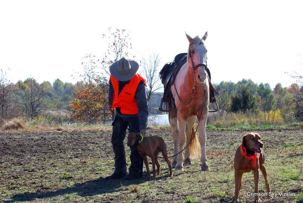 17-11-08 NAFC S4_03_Ty & Gunnar