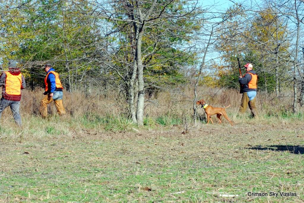 17-11-08 NAFC S4_06_Ty & Gunnar
