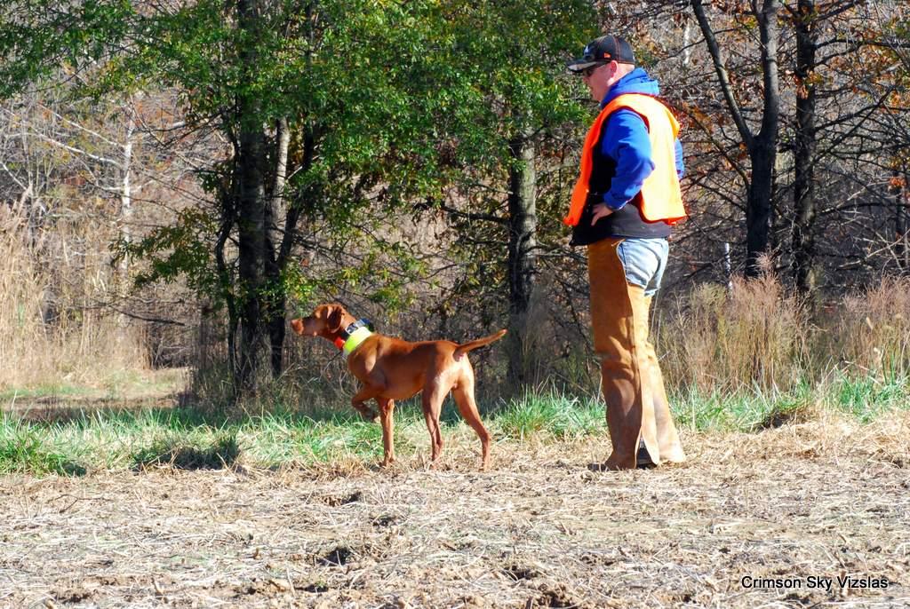17-11-08 NAFC S4_10_Ty & Gunnar