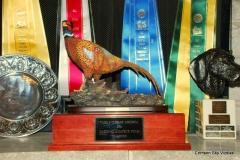 2011 11-11 VCA NAFC