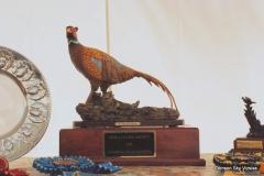 2011 VCA NFC Awards