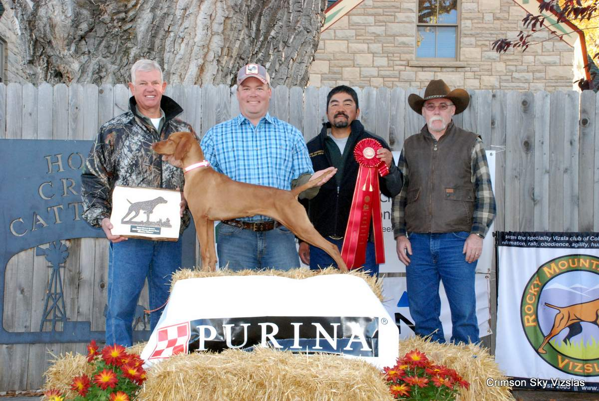 """VCA Derby 2015 2nd CK Too Hot To Handle """"Cayenne"""" O/ Brian Adams H Brian Gingrich"""