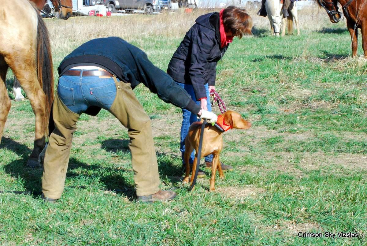 16-03-25 MVF 03_001_Cora & Rusty