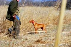 16-03-25 MVF 03_022_Cora & Rusty