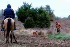 17-11-06 NAFC 8_12_Raider & Zoey