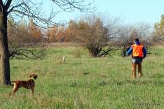 17-11-08 NAFC S4_13_Ty & Gunnar
