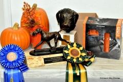 17-11-08 NAFC_01_Winners