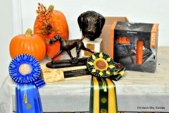 17-11-08 NAFC_02_Winners