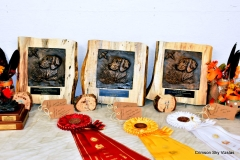 17-11-09 Trophies (2)