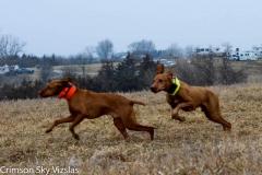 2018-03-20 NGDC Brace 9 Gunnar / VanKooten and Gauge / Spurgeon