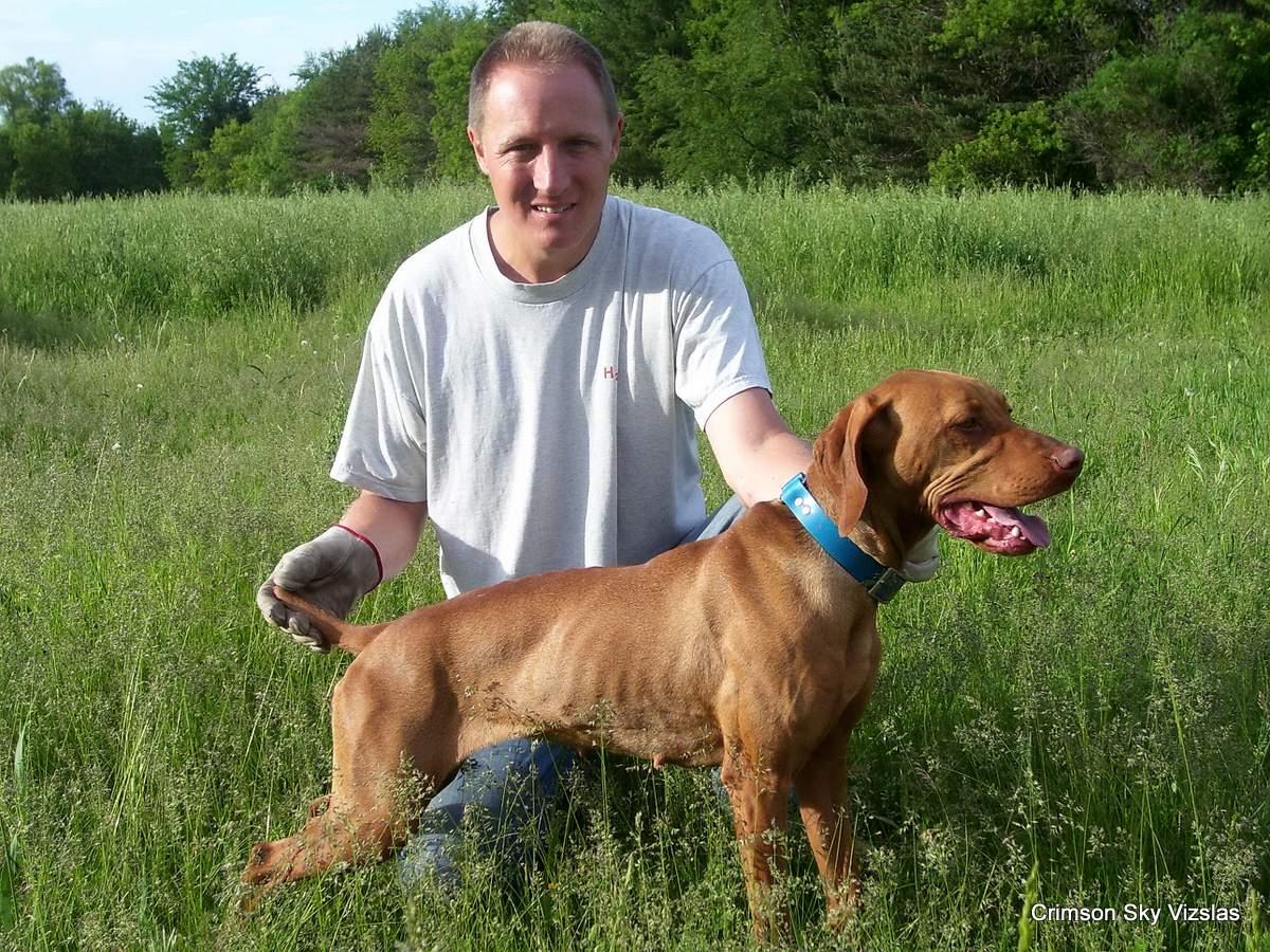 06-08-08 dog training011