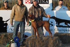 Vizsla Club of America National Gundog Championship 2008
