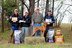 National Vizsla Association National Field Champion Crimson's Twenty Gauge Ruger