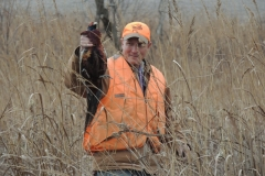 Mark Pheasant hunting with the dogs