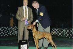 RUGER DOG SHOW