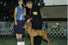 ruger new champion