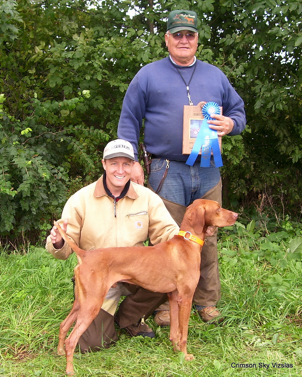 Ruger new Field Champion at the VCOI field trial
