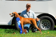 Winners-02-Ruger