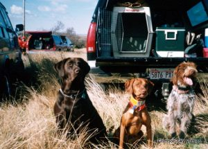Char, Madison and Gunnar